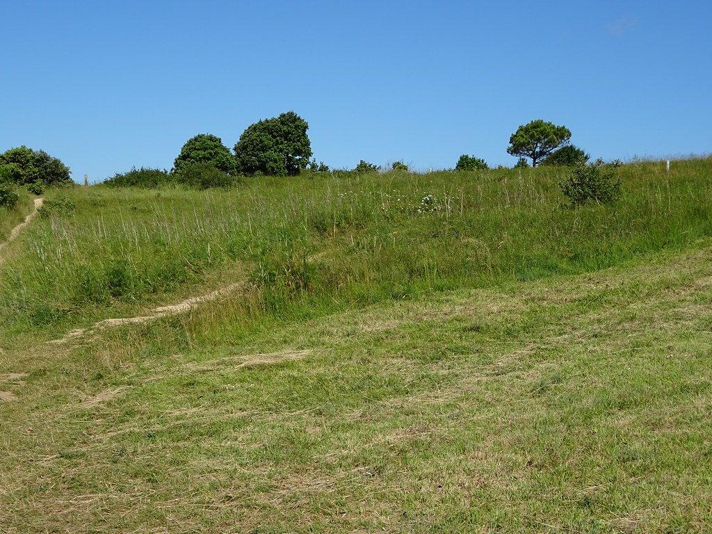 plateau de Suzac