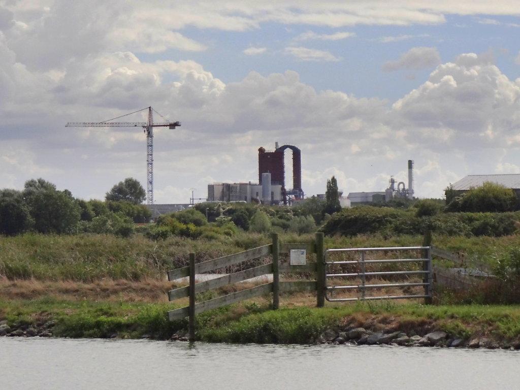 paysage de marais