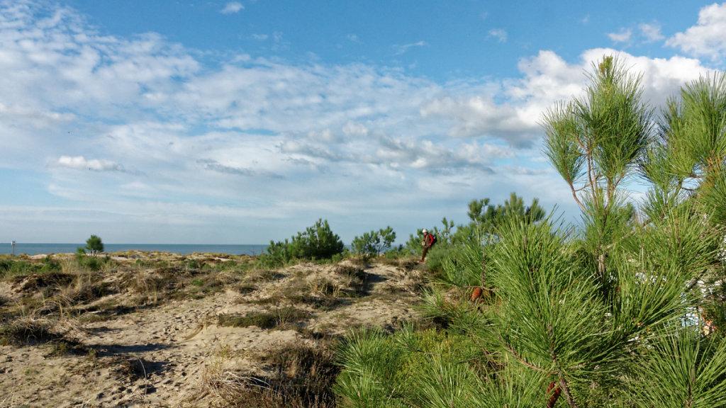 La dune et l'océan