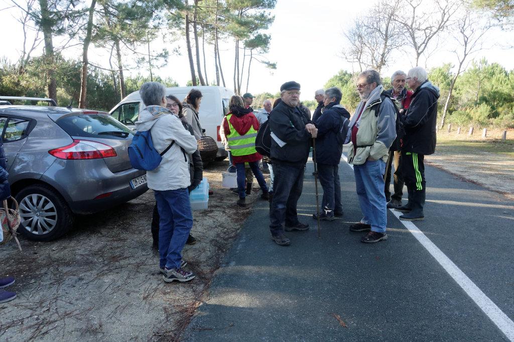 Route forestière de la Pointe Espagnole