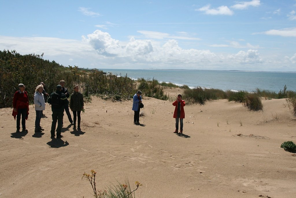 le travail de protection des dunes