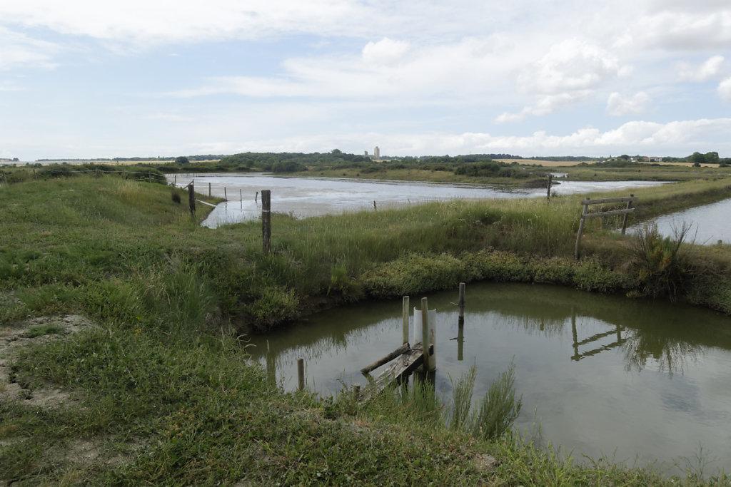 Arrivée d'eau réglable dans le marais avec les jas au second plan.