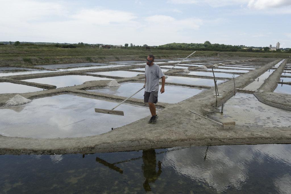 Le râteau pour la récolte du gros sel