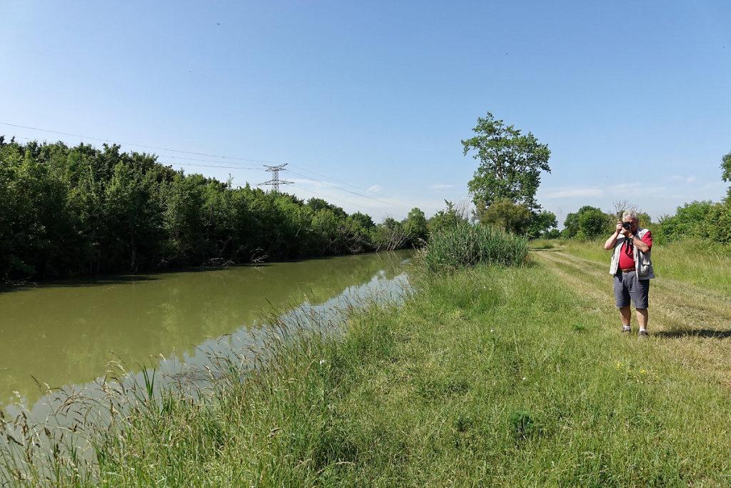 Le canal Charente-Seudre