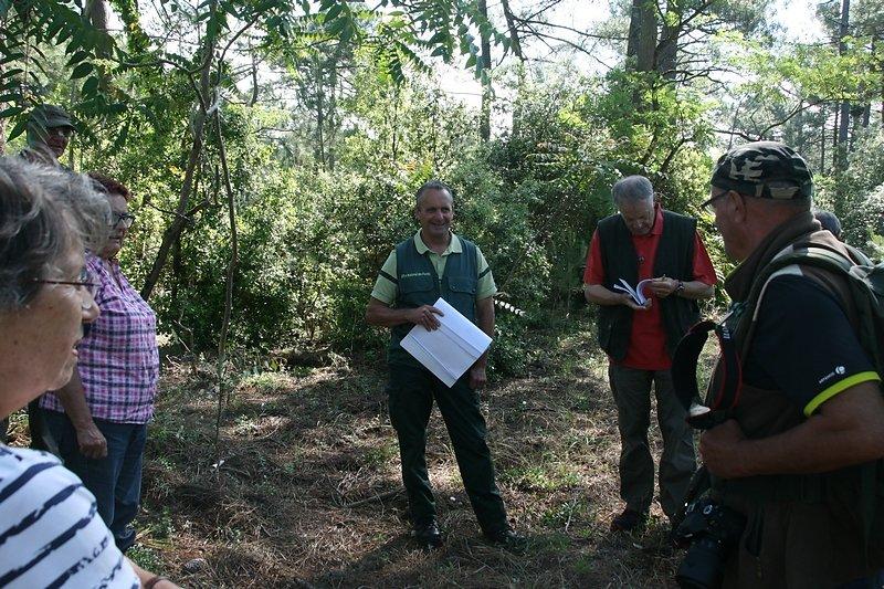 découverte sur le terrain du vocabulaire forestier