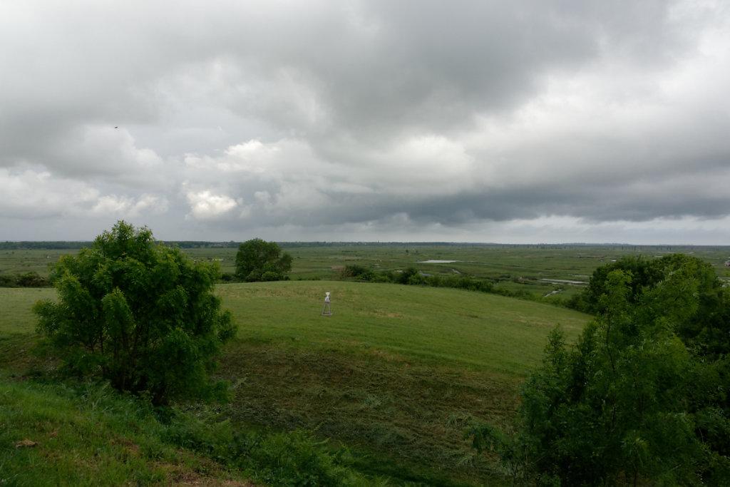 Vue sur le marais de Brouage