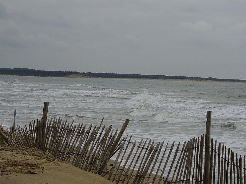 les ganivelles pour maintenir le sable