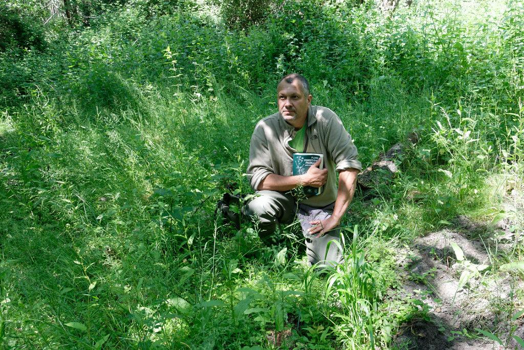 Jean-Marc a remarqué une petite plante spécifique