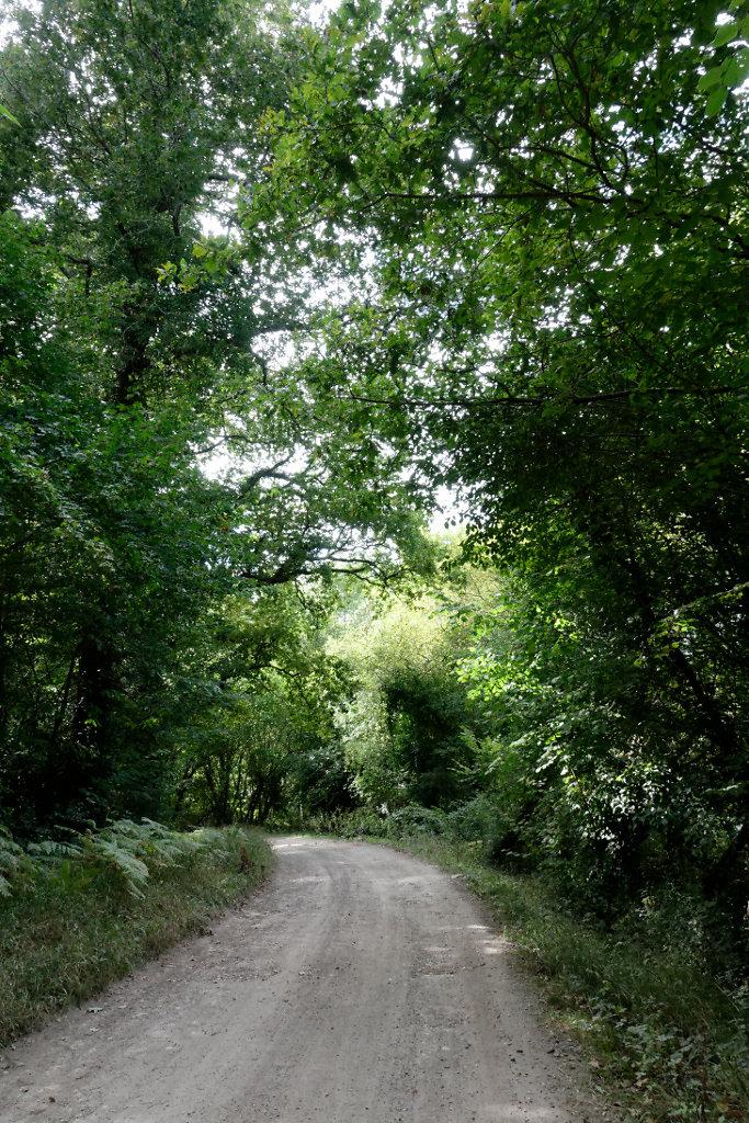 Chemin des Mattes  de Millard