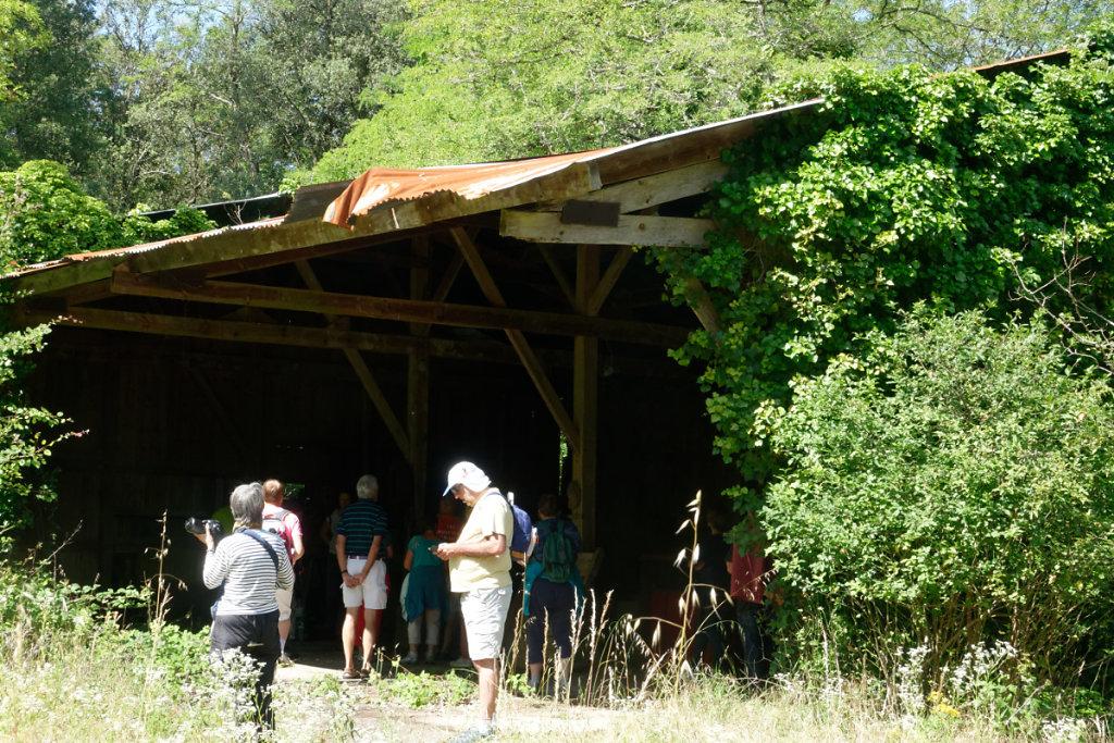 des restes des installations de l'ancien propriétaire : la famille Delmas